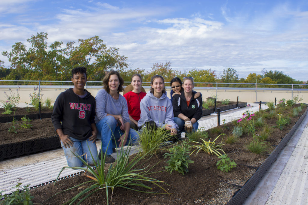 Students tend to the rooftop garden.